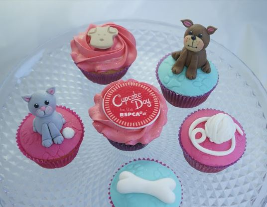 Cupcake Day for the RSPCA 24th August 2018